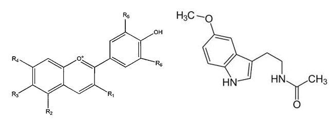structure Anthocyanin and Melatonin
