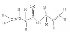 structure alicin